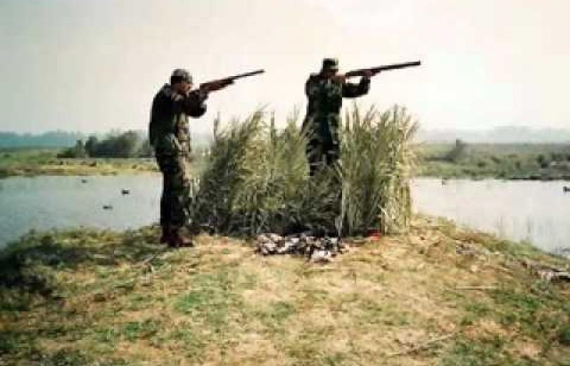 تعديلات وزارة البيئة حول الصيد