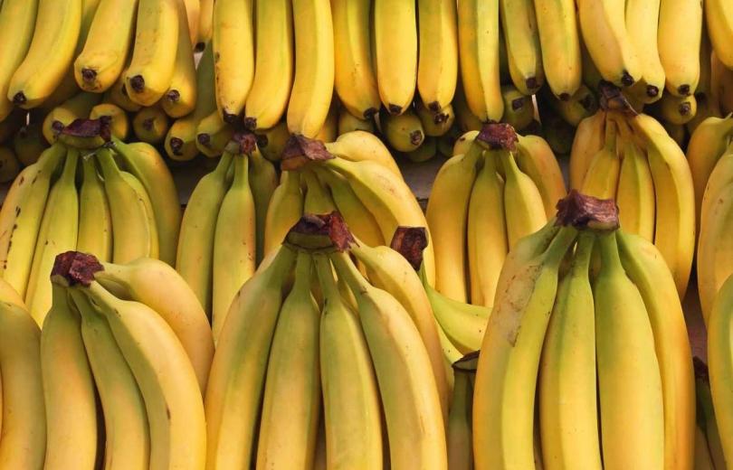 تسوية موضوع شاحنات الموز اللبناني في المصنع