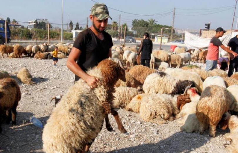 «أضحى» لبنان بين الفقر والكآبة