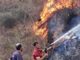 200 سيارة تعمل في الاسعاف واطفاء الحرائق