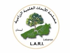 الابحاث الزراعية مستعدة لتوزيع بذور مكان الاشجار المحروقة