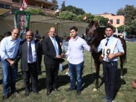 مسابقة جمال الخيول العربية في سنتها السابعة