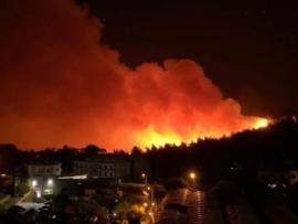 مؤشر الحرائق يستمر مرتفعاً حتى نهاية الاسبوع