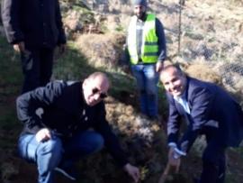 ياسين يطلق حملة تشجير السفح الجبلي