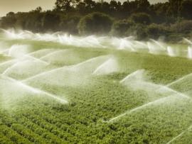 افرام :  لبنان بدأ التاثر بموجة حر شديدة وارشادات للمواطنين والمزارعين